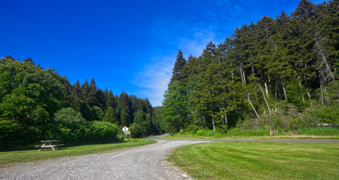 stockvault-fundy-park-scenery---hdr133595